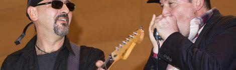 Música en directo: Blue Gain en El Paraigua